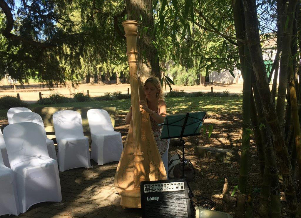 DJ Crispy Live Harpist Wedding Ceremony